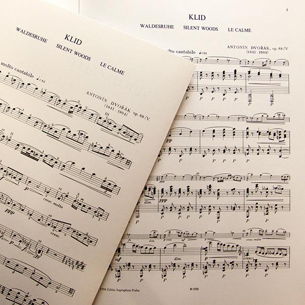 Antonin Dvorak Klid Waldesruihe Violoncello en Piano