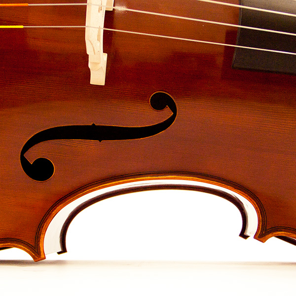 Cello 'Student'