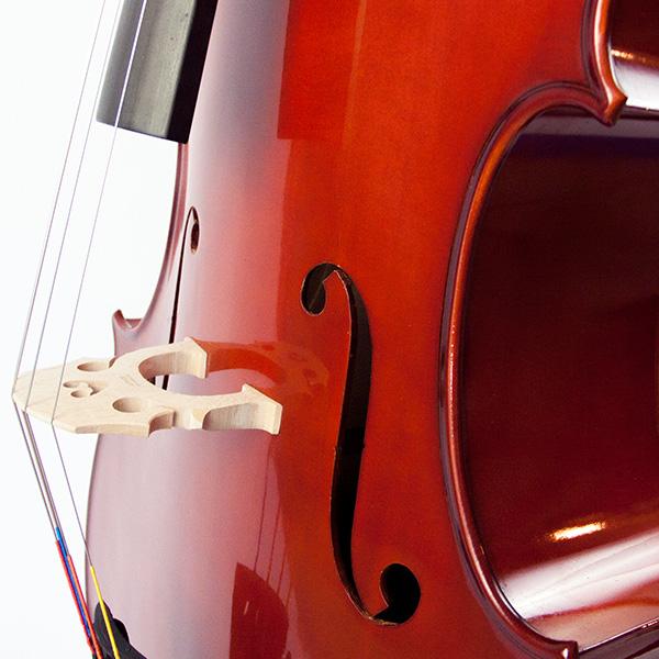 Cello 'Starter'