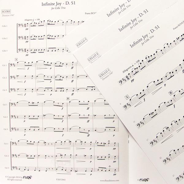 Franz Schubert Infinite Joy d.51 cello trio