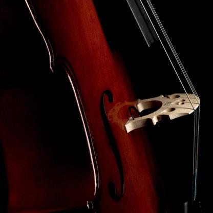 Fishman C-200 cello element Concert Series piëzo
