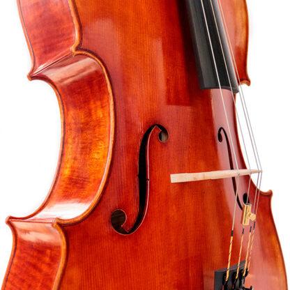 Cello Hill Cellowinkel