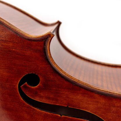 Detail inleg Cello Allievo