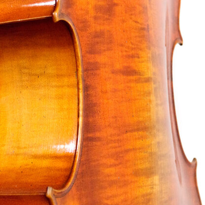 welving achterblad Cello La Lutheri d'Art Stradivarius Antique model