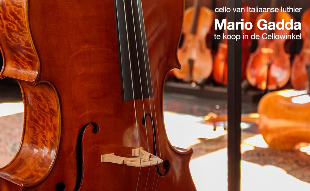 Cello Mario Gadda te koop in de Cellowinkel Dieren