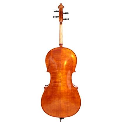 Achterkant Cello Apprendista