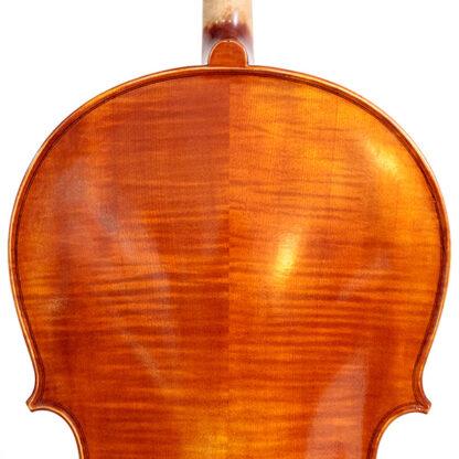 Schouders Cello Apprendista