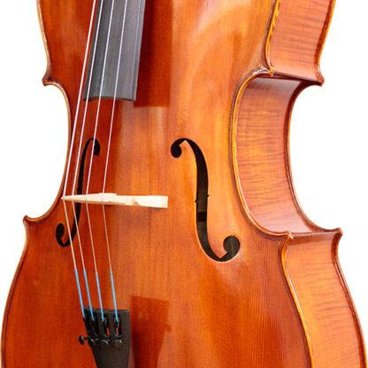 Zijaanzicht Cello Apprendista