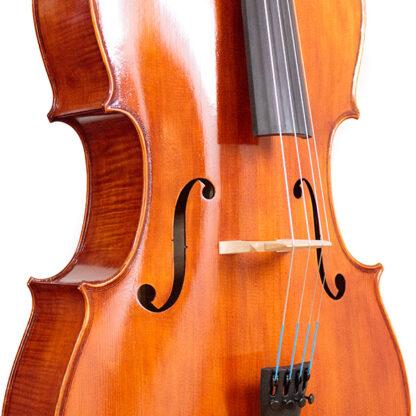 F-gaten Cello Apprendista