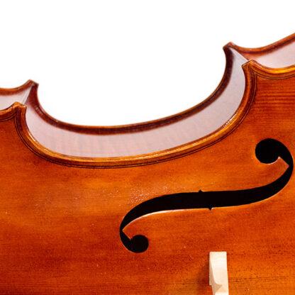 Detail f-gat Cello Apprendista