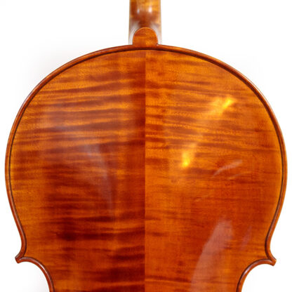 Schouders Cello Sergio Scaramelli 2020