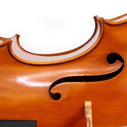 f-gat Cello Sergio Scaramelli 2020