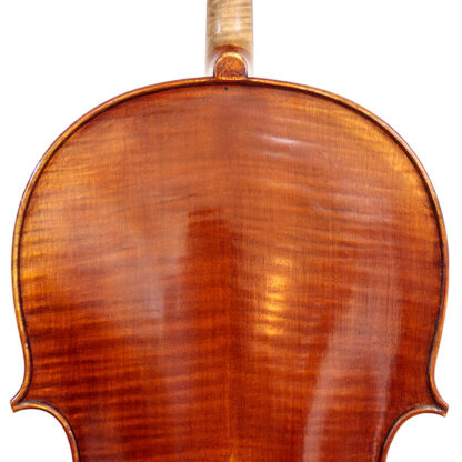 Schouders Cello Thorsten Theis 2007 Montagnana model
