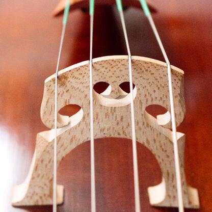 Cellokam Cello Thorsten Theis 2007 Montagnana model